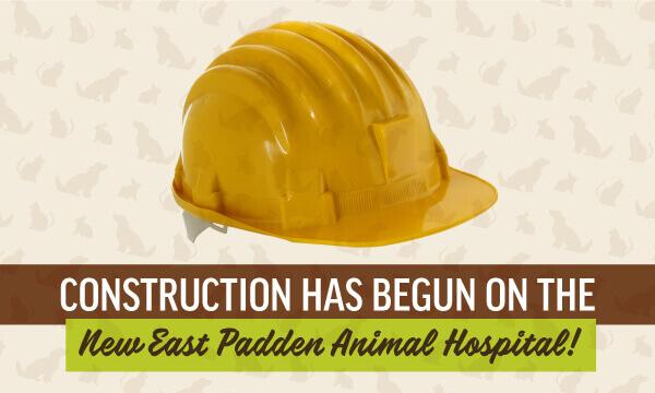 Construction Has Begun!